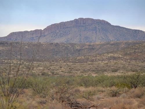 1.25 Acres In Holbrook, AZ : Holbrook : Navajo County : Arizona
