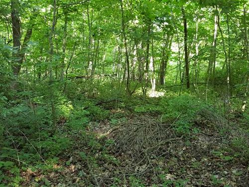 Nice Small Tract With Building Sit : Butlerville : Jennings County : Indiana