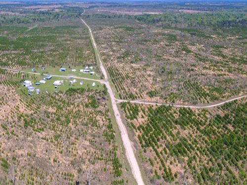 1970 Ac Us 287 : Corrigan : Polk County : Texas