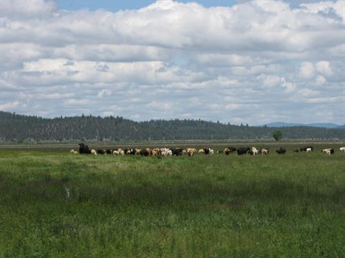 360 Acre Langell Valley Ranch : Bonanza : Klamath County : Oregon
