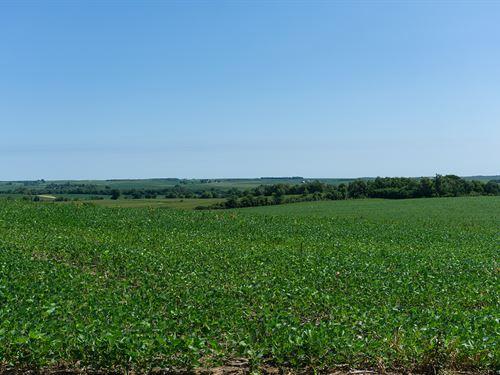 Ceresco Acreage Lot 3 : Ceresco : Saunders County : Nebraska