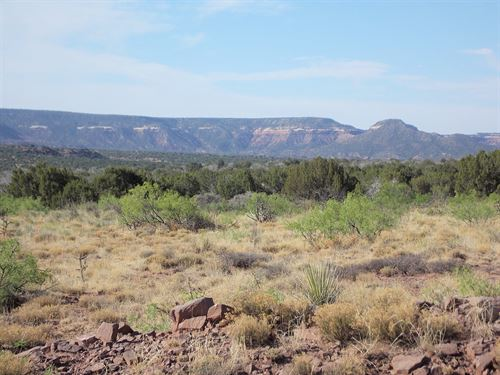Bull Canyon Ranches - Tract 59 : Newkirk : Guadalupe County : New Mexico