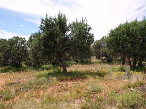 1.1 Acres In Vernon, AZ : Vernon : Apache County : Arizona