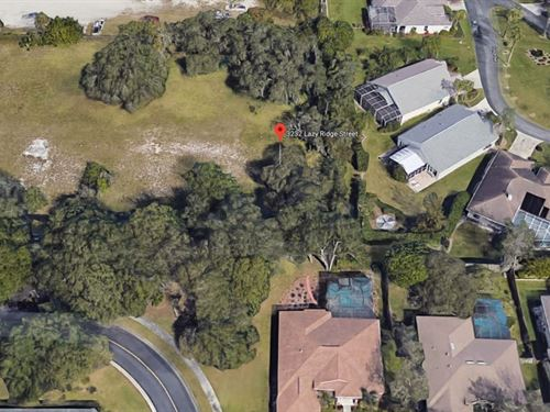 .18 Acres In Sarasota, FL : Sarasota : Florida