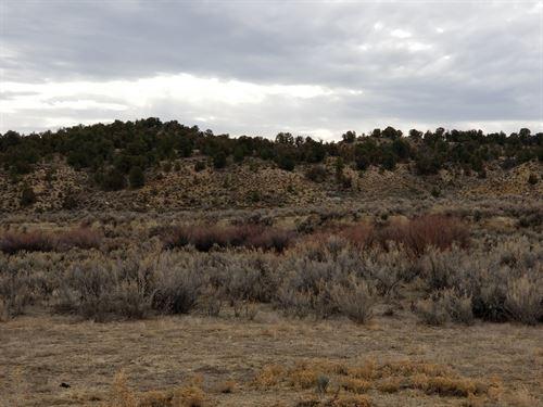 State Line Ranch : Rangely : Rio Blanco County : Colorado