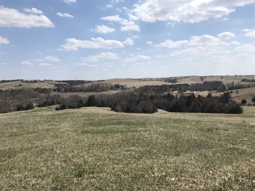Davis Creek Farm And Hunt : Scotia : Howard County : Nebraska