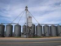 Yuma County Grain Online Auction : Yuma : Yuma County : Colorado