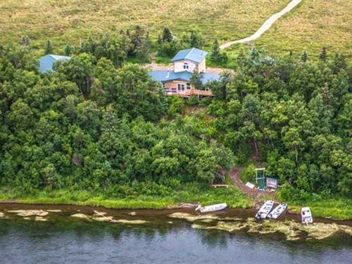 Fish Fish Fish 10 Acres 460' Brand : Iliamna : Lake And Peninsula Borough : Alaska