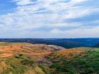 Premium Commercial/Development Land : Hollister : Taney County : Missouri