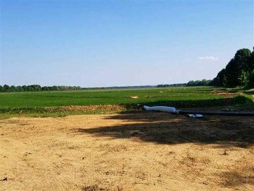 200 Acres Row Crop Farm, 3 Wel : Success : Clay County : Arkansas