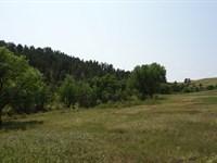 Elk Basin Ranch : Hermosa : Custer County : South Dakota