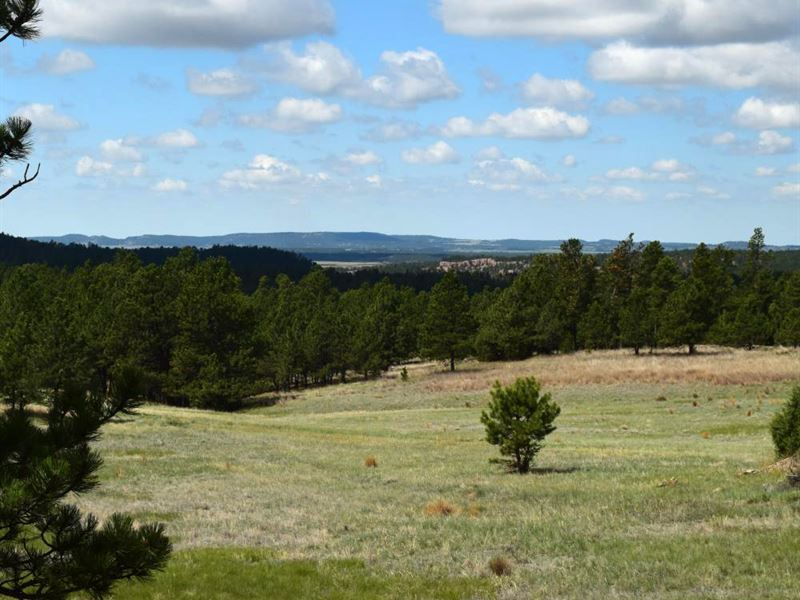 Lot 3 Prong Horn : Land for Sale : Hot Springs : Custer County ...
