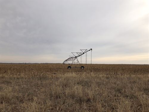 South Fork Solomon Circle And Quart : Bogue : Graham County : Kansas