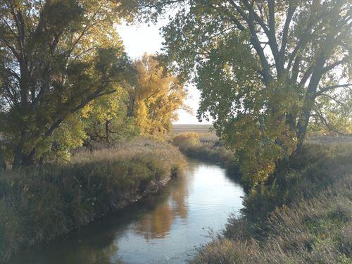 Big Springs Irrigated Hobby Farm : Big Springs : Keith County : Nebraska