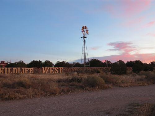 Wildlife Park : Edgewood : Santa Fe County : New Mexico