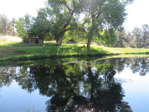 Sunnyvale Estates : Livermore : Larimer County : Colorado