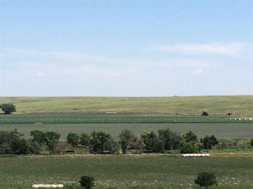 Sappa Creek Junction : Oberlin : Decatur County : Kansas