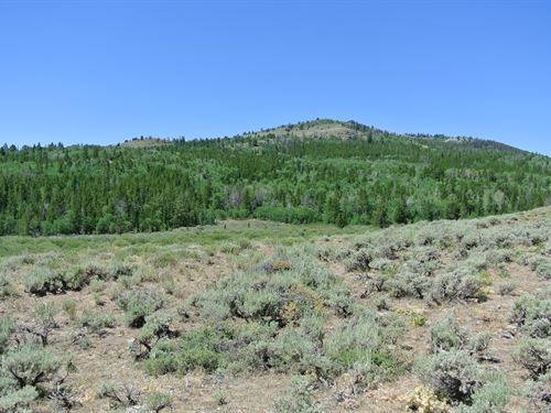 Iron Mountain Vista 21 : Lander : Fremont County : Wyoming