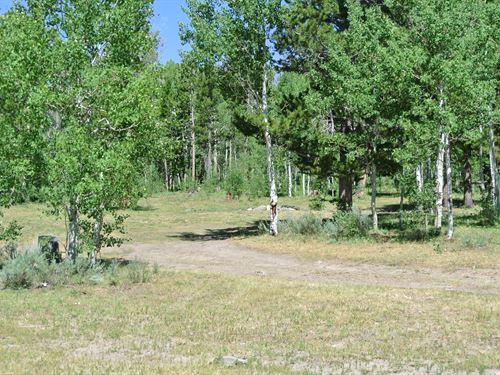 Snow Creek Lot 3 : Lander : Fremont County : Wyoming