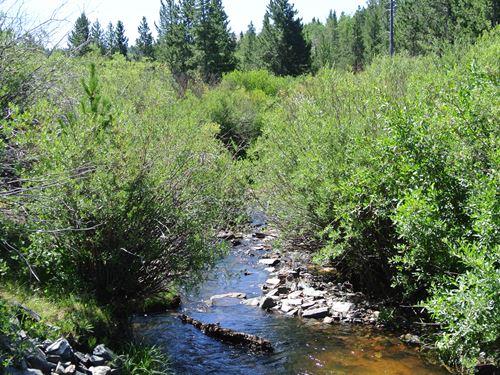 Beaver Creek Retreat Lot 7 : Lander : Fremont County : Wyoming