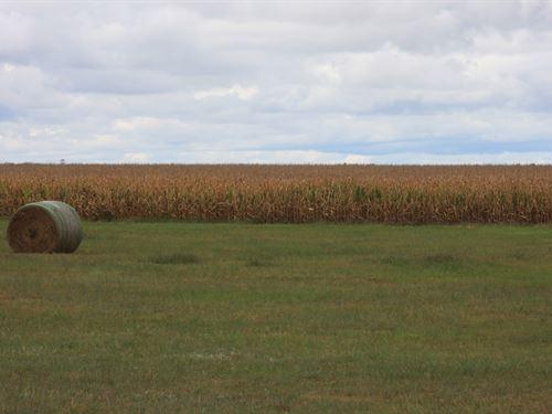 Holt County Irrigated Farm : O'neill : Holt County : Nebraska