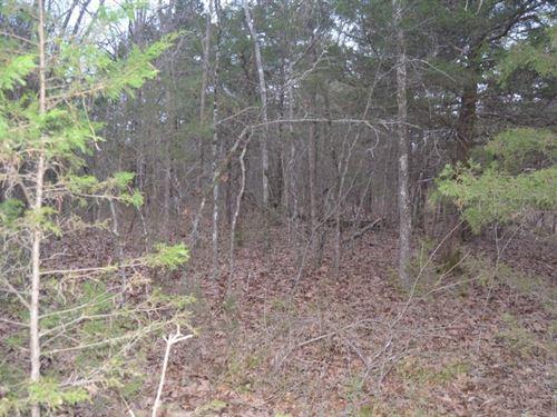 .12 Acres In Lead Hill, AR : Lead Hill : Boone County : Arkansas