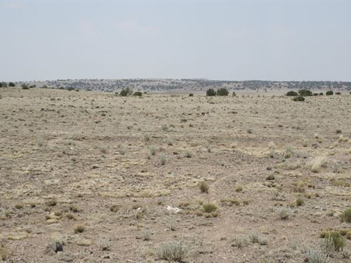 .22 Acres In Concho, AZ : Concho : Apache County : Arizona