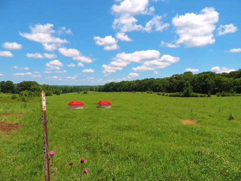 85 Ac, Of Fenced Pasture : Eatonton : Putnam County : Georgia