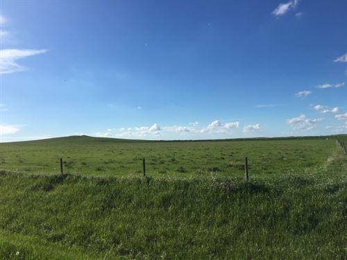 Cherry County Grass : Gordon : Cherry County : Nebraska