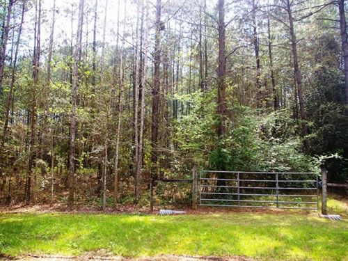 2.21 Acre Home Site For Sale McComb : McComb : Pike County : Mississippi