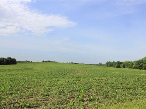 Tillable Row Crop Land Auction Mo : Fayette : Howard County : Missouri