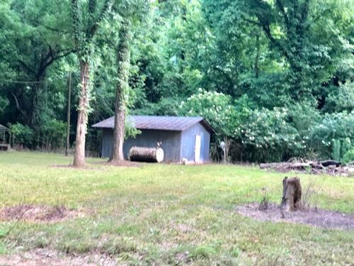 Beautiful 1/2 Ac Close To Lake Mary : Woodville : Wilkinson County : Mississippi