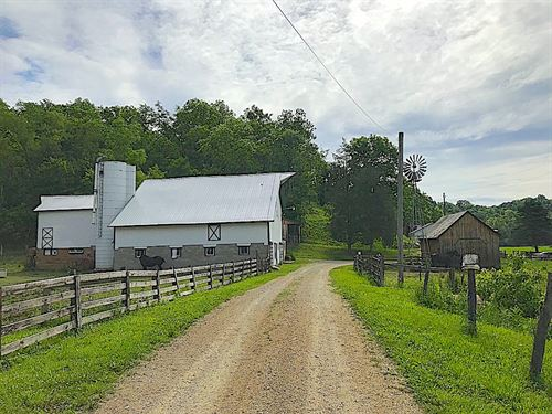Williams Bridge Rd - 265 Acres : Chesterhill : Morgan County : Ohio