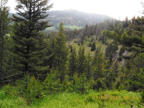 Elk Mountain Property : Bozeman : Gallatin County : Montana