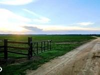 Robinson Switch Farm : Lowndesboro : Lowndes County : Alabama