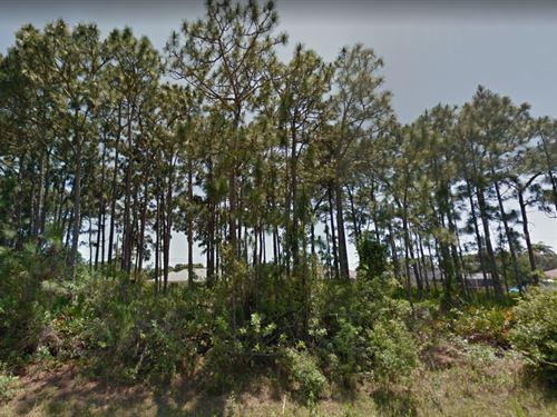 Charlotte County, Fl $16,000 : Englewood : Charlotte County : Florida