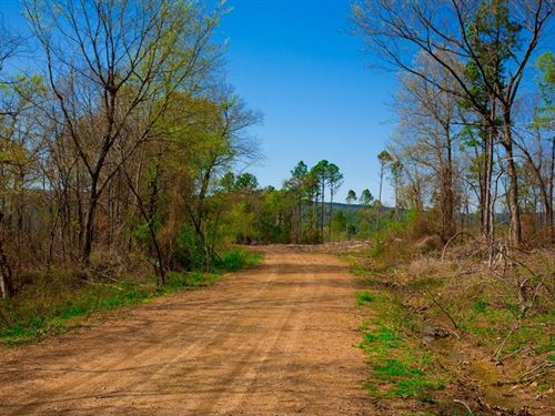 Beautiful Mountain Retreat : Wilburton : Latimer County : Oklahoma