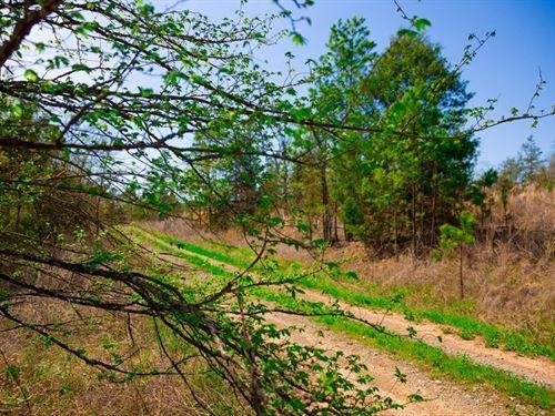 Beautiful Homestead Retreat : Wilburton : Latimer County : Oklahoma