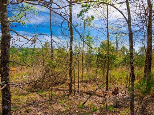 Beautiful Mountain Retreat 257 : Wilburton : Latimer County : Oklahoma