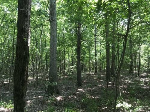 Hunters Paradise, 40 Acres, Po : Floral : Independence County : Arkansas