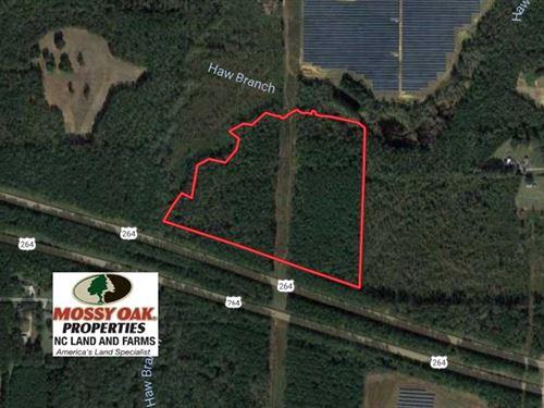 Under Contract, 30 Acres of Timbe : Bailey : Nash County : North Carolina