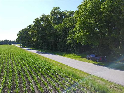 5.5 Acre Woods Located Sw Of Kn : Knox : Starke County : Indiana