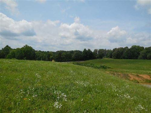 Davis 14.6 - Tracts 6 & 7 - Hillt : Magnolia : Larue County : Kentucky