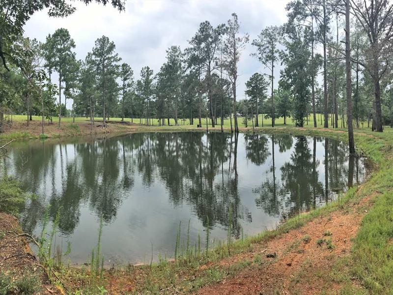 Joe Reeves Road Tract : Castleberry : Conecuh County : Alabama