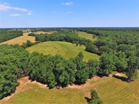 71 Acre Farm With Mountain View : Chesnee : Spartanburg County : South Carolina