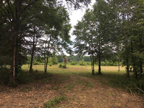 32 Acres Fruit Trees, Tillable Acre : Cedartown : Polk County : Georgia