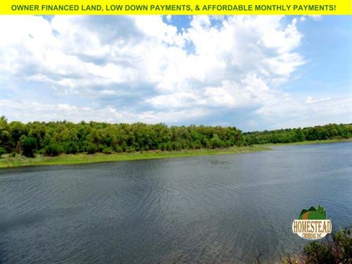 Untouched Land On Deep Water Cove : Yellville : Marion County : Arkansas