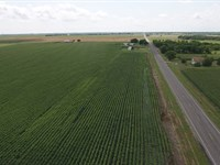 25.75 Acres Of Prime Farmland : Troy : Bell County : Texas