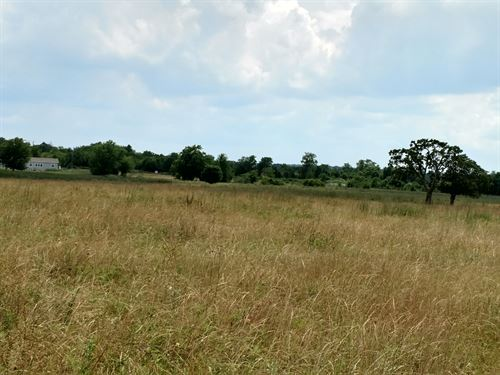 29.37 Acres, Cr 110 : Iola : Grimes County : Texas