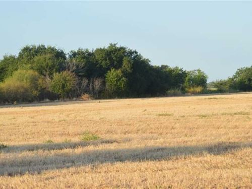 129 Acres on FM 1954 Near Holliday : Holliday : Archer County : Texas